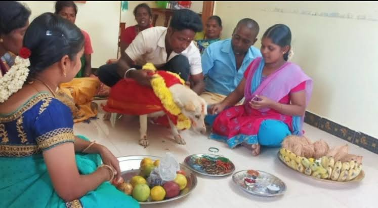 The Tamil Nadu family is throws a party for their dog.