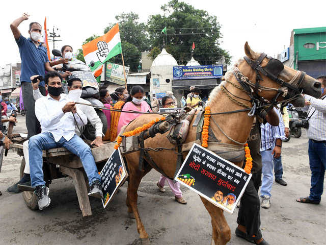 UP: Congressmen demonstrated by driving tongas and bullock carts against the rising prices of petrol and diesel