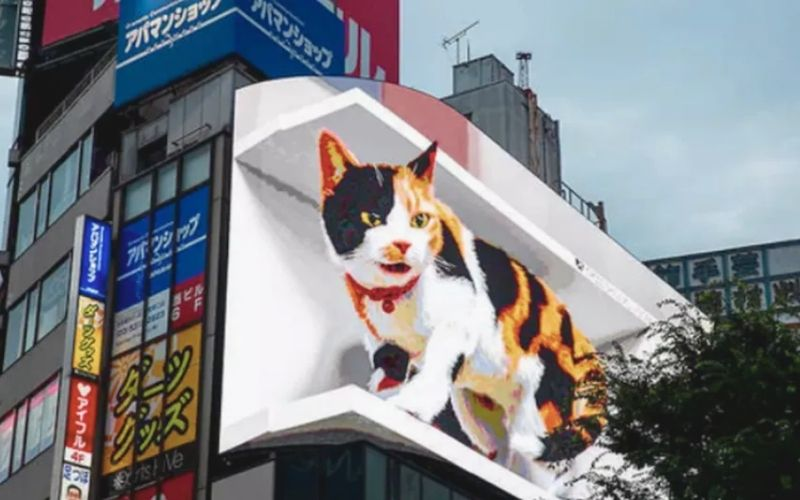 Head Turner – Japan's 3D cat billboard is something you can't take your eyes off